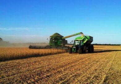 DATAGRO: Novo levantamento para safra 2020/21 de soja na América do Sul confirma recorde de área e produção